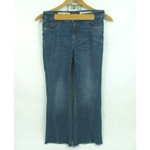 Anthropologie Pilcro High Rise Flare Jeans Size 29